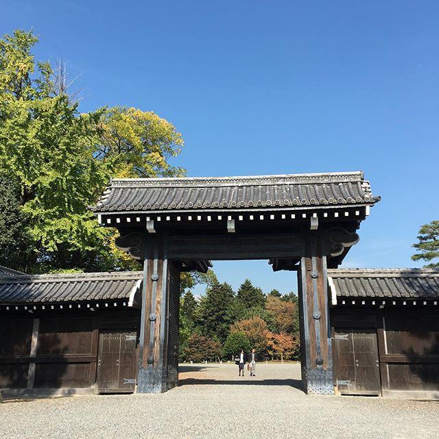 気持ちの良い空の下の御所🌞向かい側にある裁判所の前には報道陣や立ち止まる人、警察官でいっぱい🙁#kyoto #kyotophoto #京都 #京都御苑 #snaplace (Instagram)