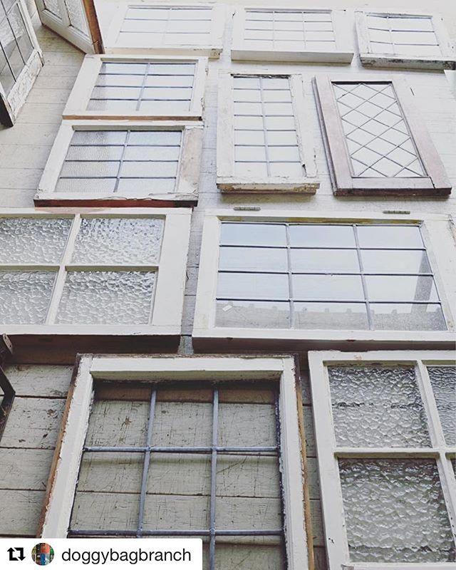 小さな小窓。1つは欲しいとずっと思っているアイテム。窓としてだけでなく壁にかけたり立てかけて使ったり。本当はこんな窓の付いたお家に住みたい!@doggybagbranch より (Instagram)