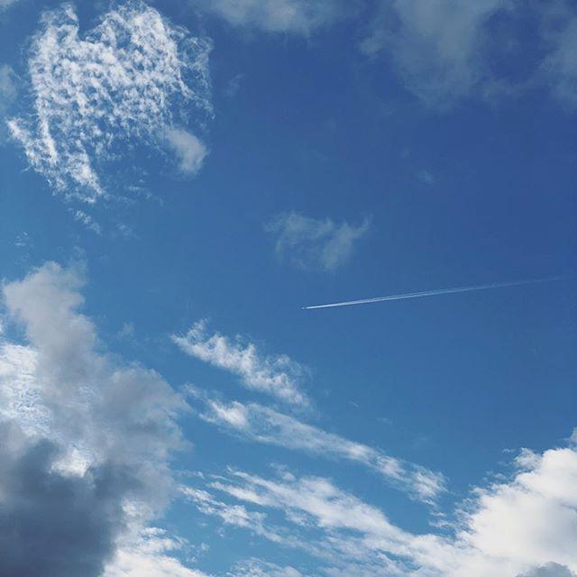 久しぶりの青空。#sky #cloud #いまそら #イマソラ #そら #雲 #kyoto #京都 (Instagram)