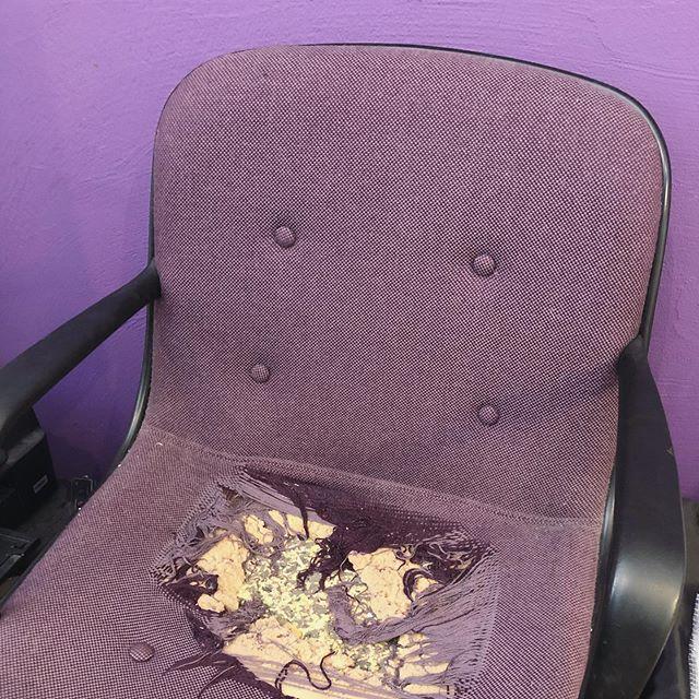 やっと自宅に置いていた作業椅子を店に持ってきた。が、どうにもこうにも、くるんくるんが残した爪痕が大きすぎる件おまけに壁が紫。椅子も紫。来年にはなんとかしたい問題のひとつ。#くるんくるんの爪痕その壱